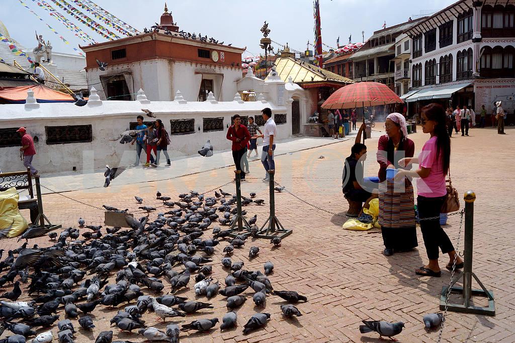 Nepal, Kathmandu — Image 20479