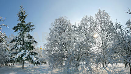 Chernihiv winter