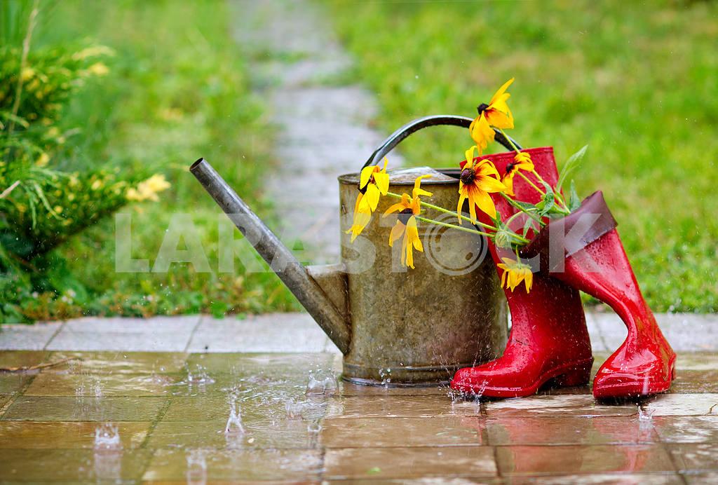 Gardening — Image 20772