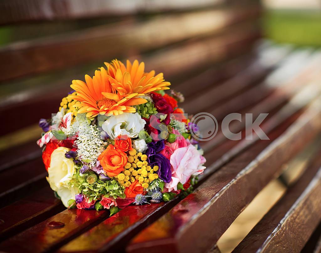 Flowers — Image 20773