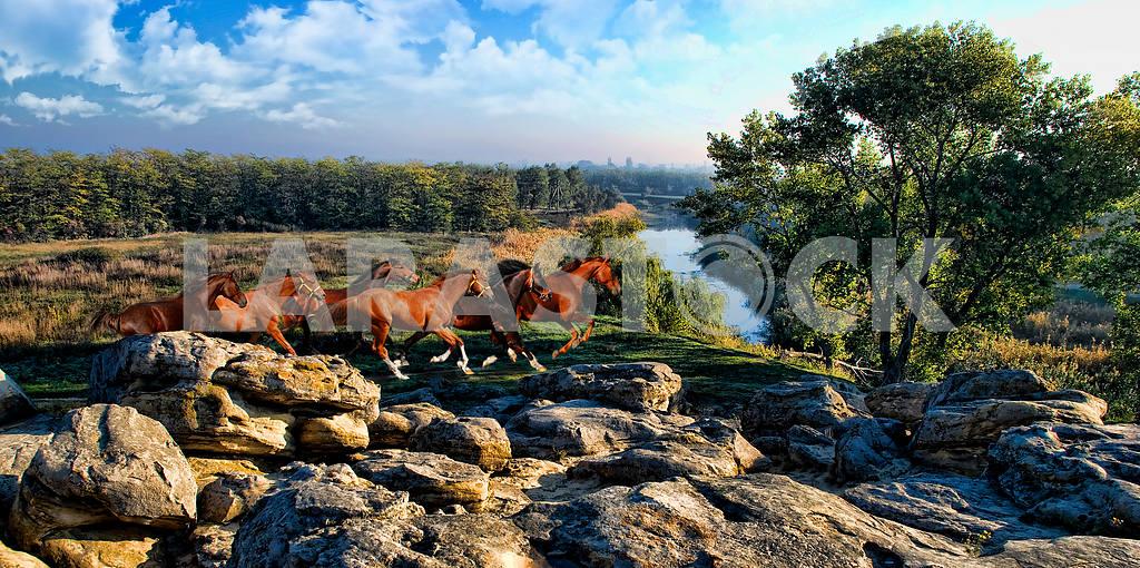 Stone graves, Zaporizhia region. — Image 21053