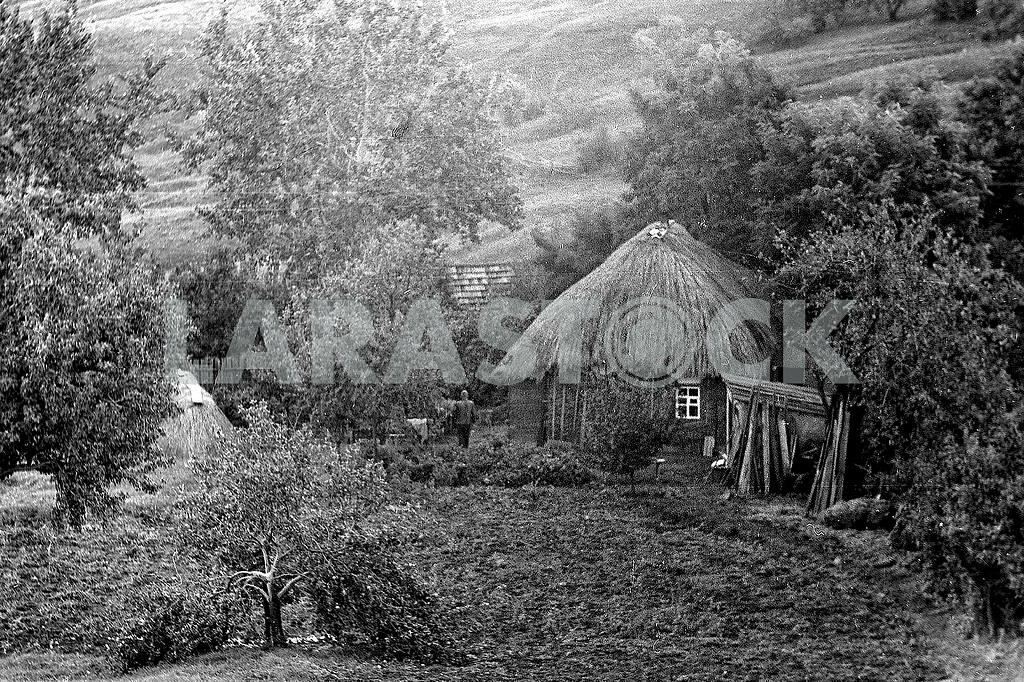 Rustic thatched hut — Image 21223