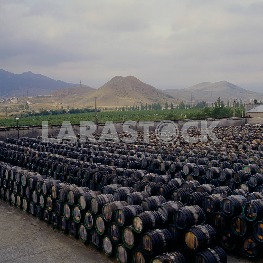 Storage barrels of port wine. Koktebel — Image 21512