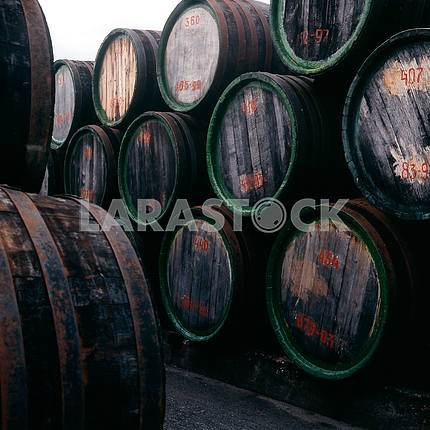 Barrels of port. Koktebel