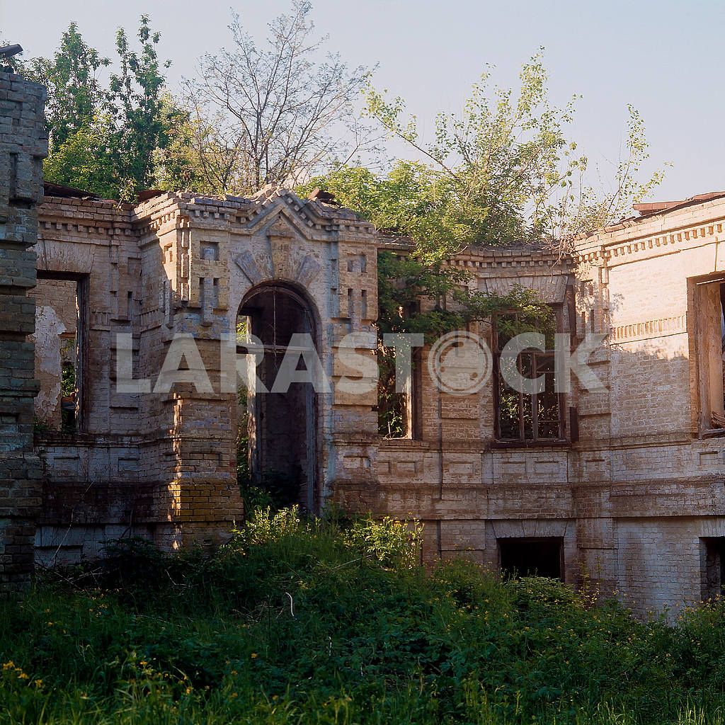 The ruins of a mansion in the village of Great Bukrin — Image 21534