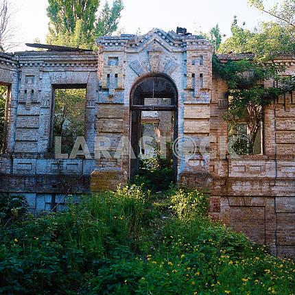 Руины особняка в деревне Великий Букрин