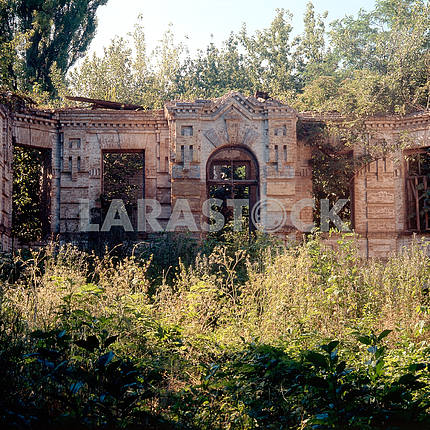 The ruins of a mansion in the village of Great Bukrin