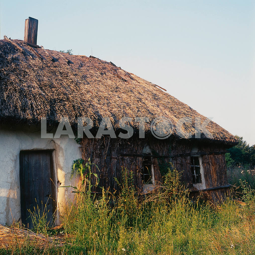 Before winter, the northern wall of a traditional Ukrainian home covered with reeds. summer 2008 — Image 21545