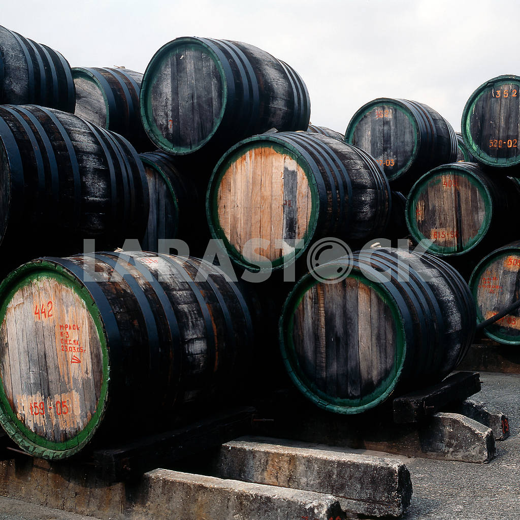 Barrels of port wine factory in Koktebel — Image 21553