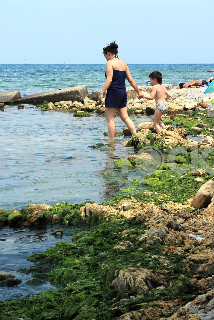 A walk along the seashore — Image 21589