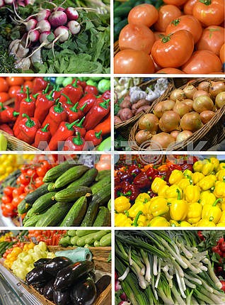 Set images vegetables in the supermarket