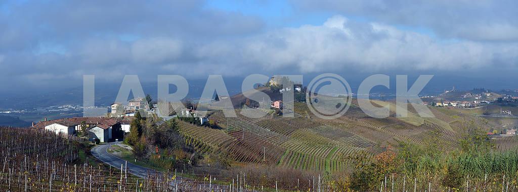 Piedmont Vineyards auttumn