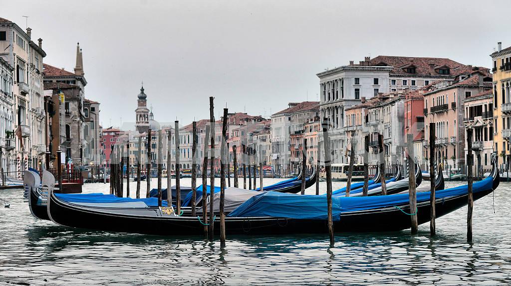 Gondolas in pier — Image 21650