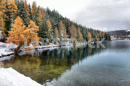 Lake St. Moritz in the autumn