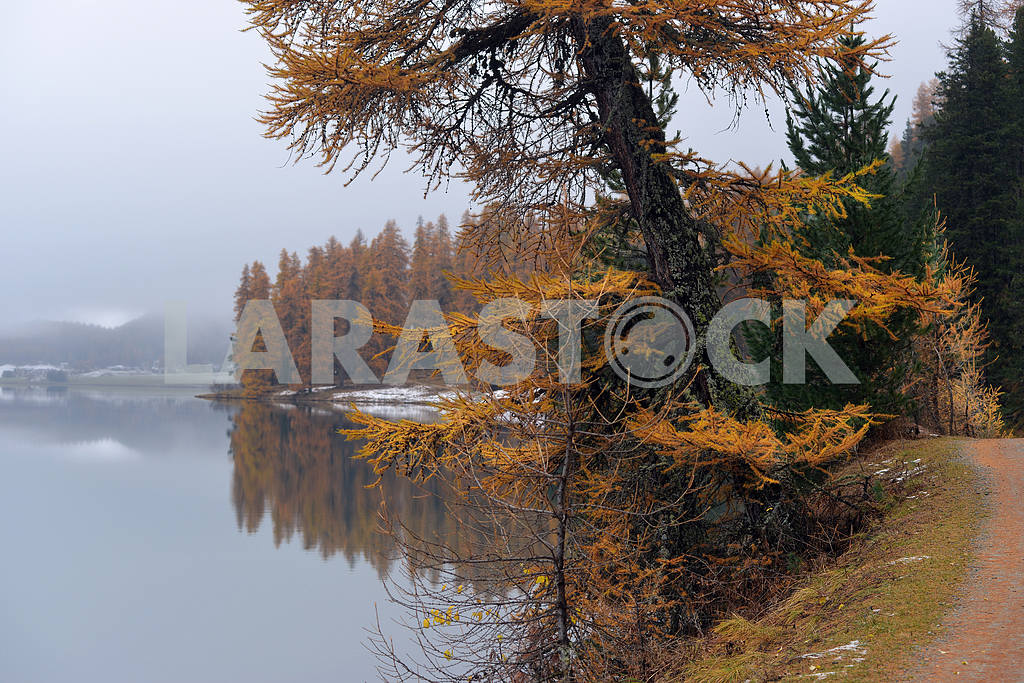 Lake St. Moritz with the first snow in the autumn — Image 21662