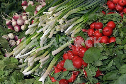 herbs and vegetables in the supermarket