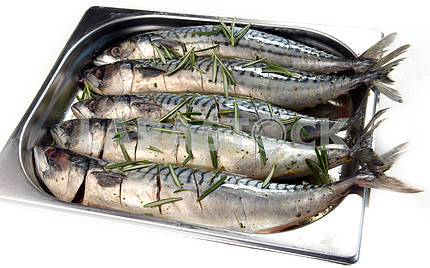 mackerel marinated