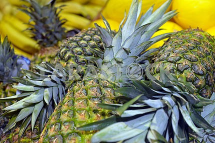 Pineapples on display in a supermarket