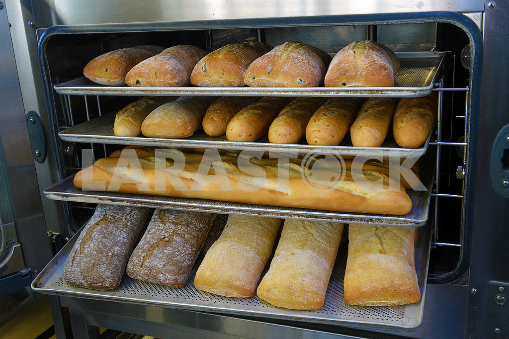 Loaf of freshly baked bread from the oven — Image 21738