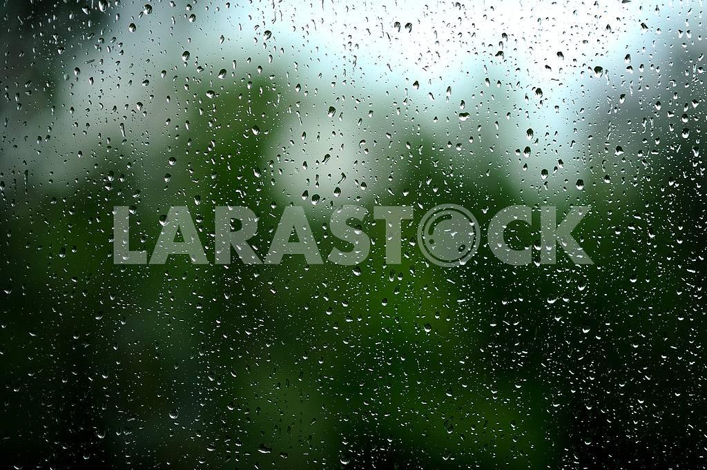 Drops — Image 2188