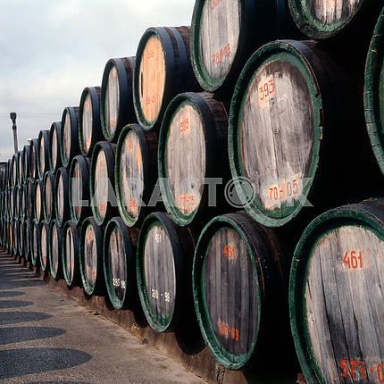 Вино старое в бочках