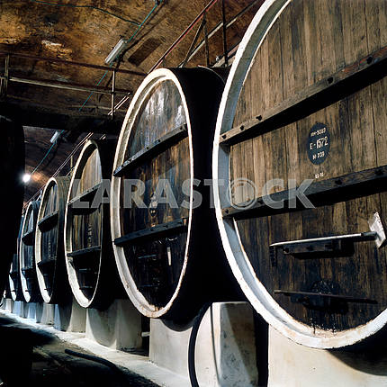 Wine barrels in the cellar