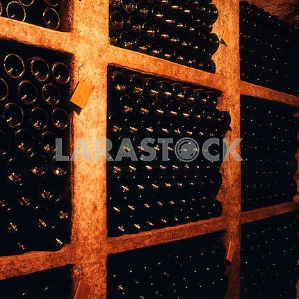 Bottles of wine matured in the cellar