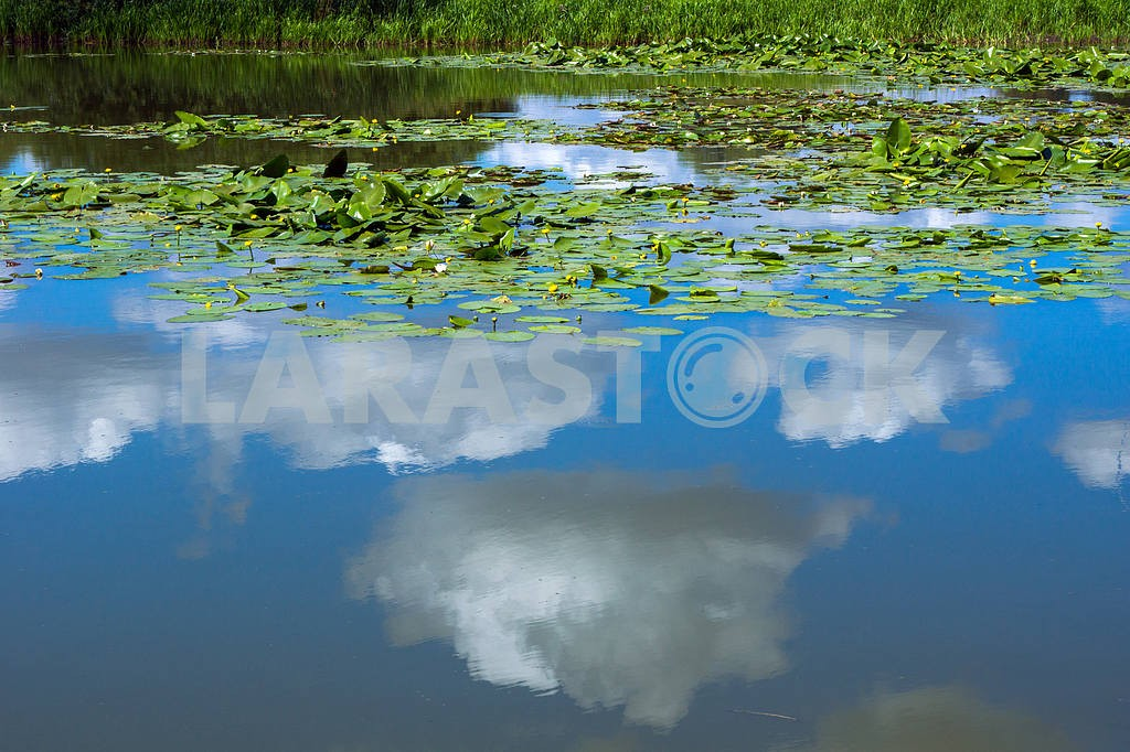 Reflection in the lake blue sky with clouds — Image 22034