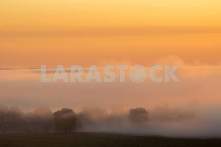 The mist and pink sky. The village of Mezin. Chernihiv region