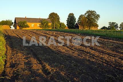 Plowed Field House. Mezin. Chernihiv region