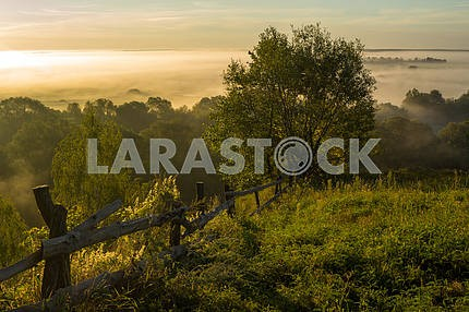Wooden fence on the background of trees and clouds of mist. The village of Mezin. Chernihiv region