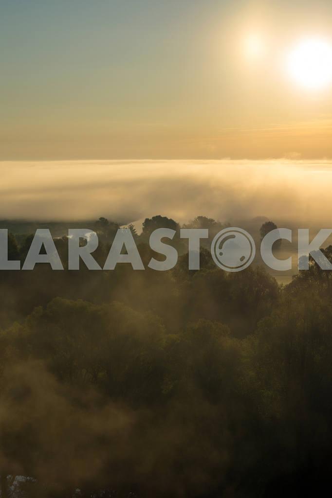Облака тумана над деревьями и солнце. Село Мезин. Черниговская область — Изображение 22058