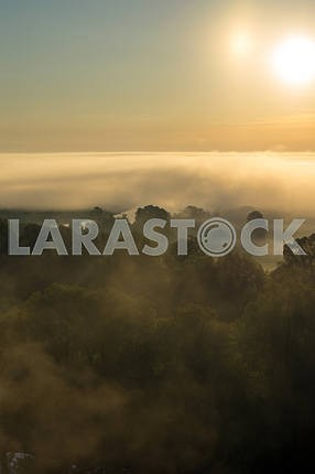 Clouds of mist over the trees and the sun. The village of Mezin. Chernihiv region