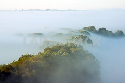 The trees covered with mist. The village of Mezin. Chernihiv region