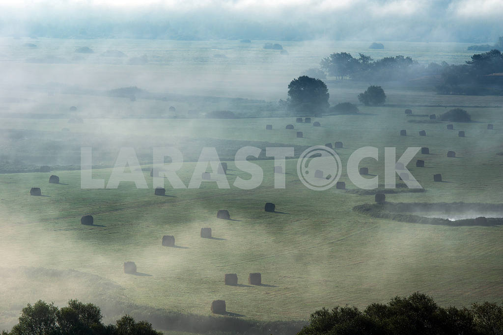 Field covered with fog. Mezin. Chernihiv region — Image 22074