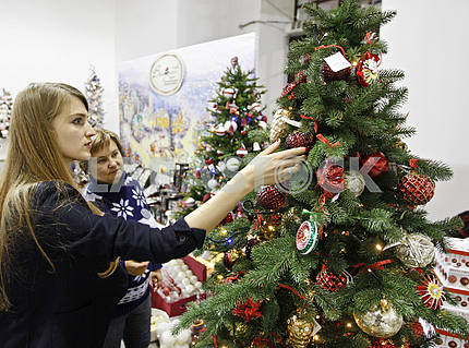 "Festival ""Christmas arsenal"" in Kiev."