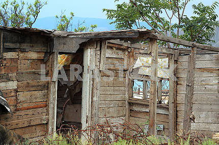 Wooden house. Ruins