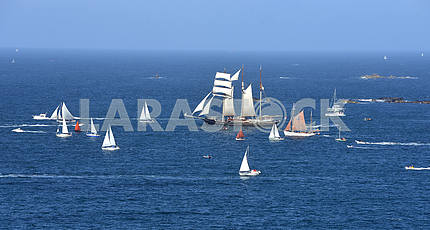 Parade of tall ships