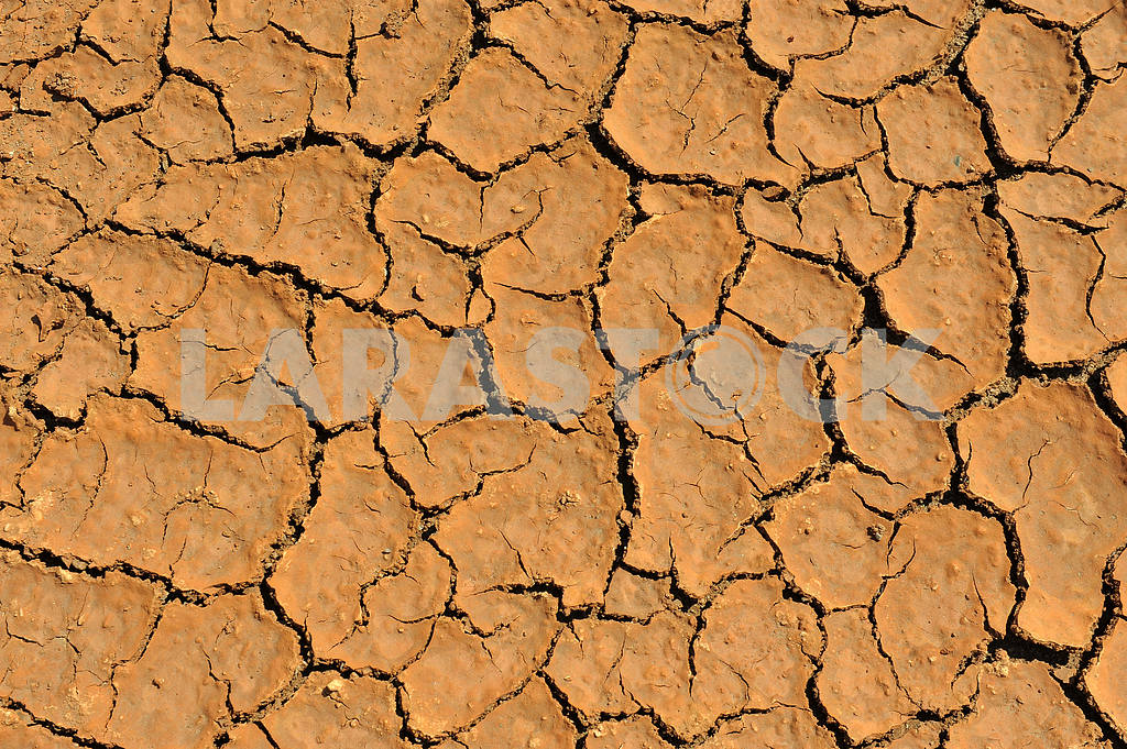 Cracked clay ground — Image 2256