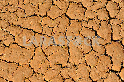 Cracked clay ground