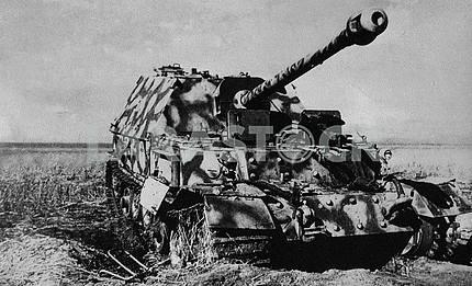 German self-propelled gun Elefant (1943).