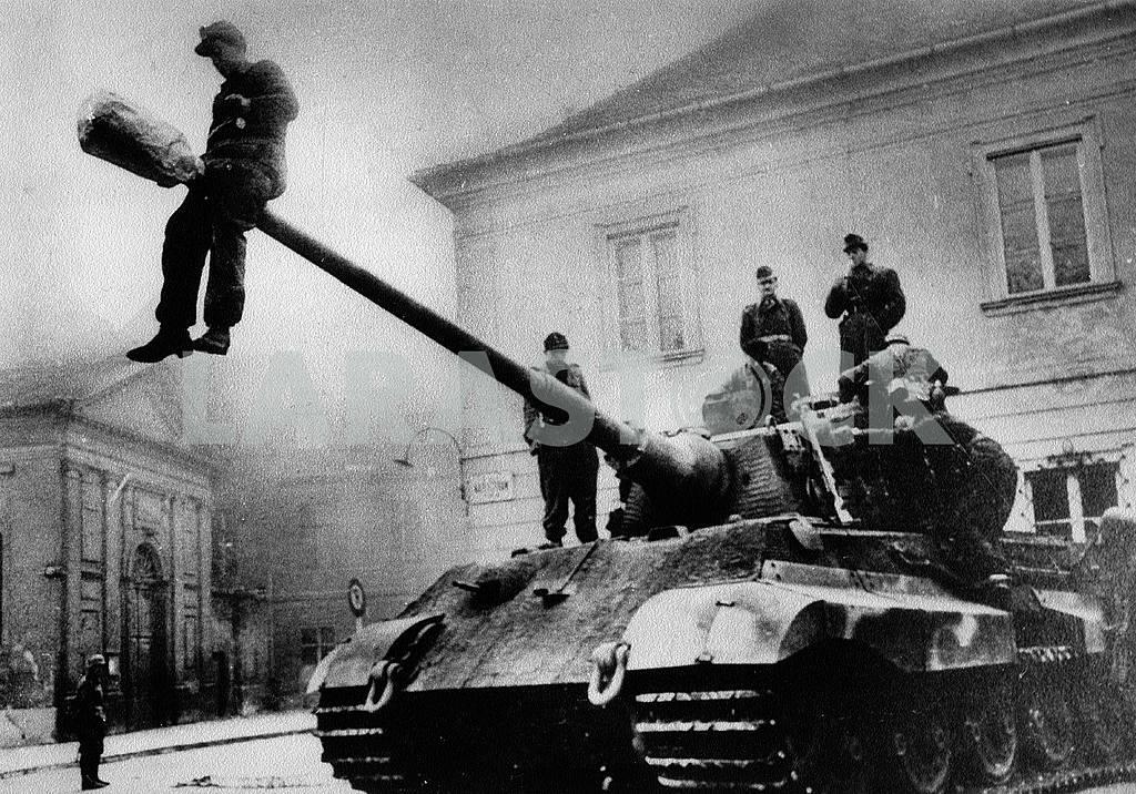 German middle tank Panther — Image 22840