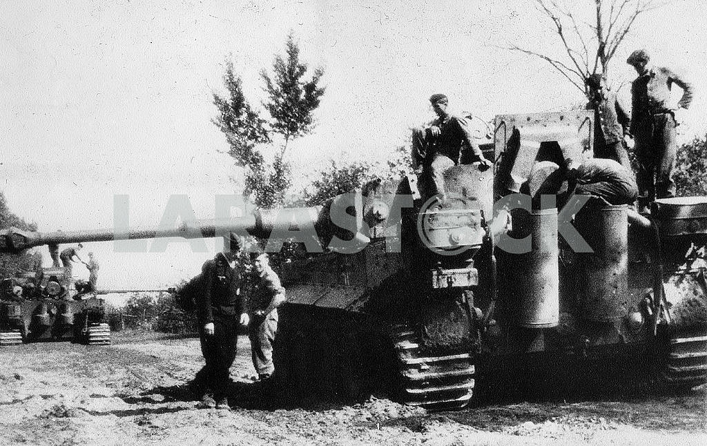 German heavy tank Tiger — Image 22843