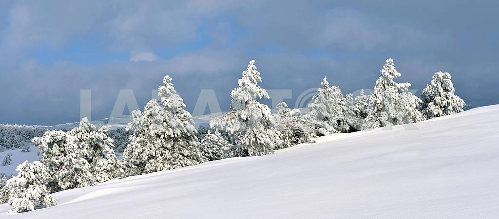 Панорама зимнего пейзажа Ай-Петри