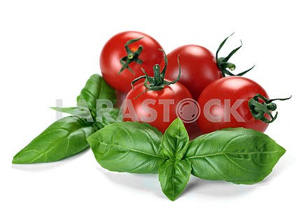 Leaves of basil and tomatoes