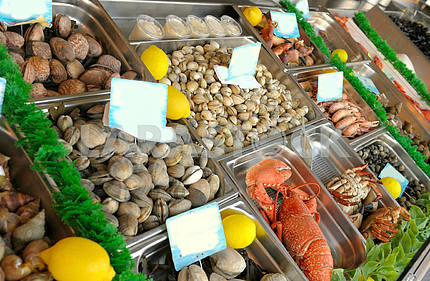 Show-window of seafood