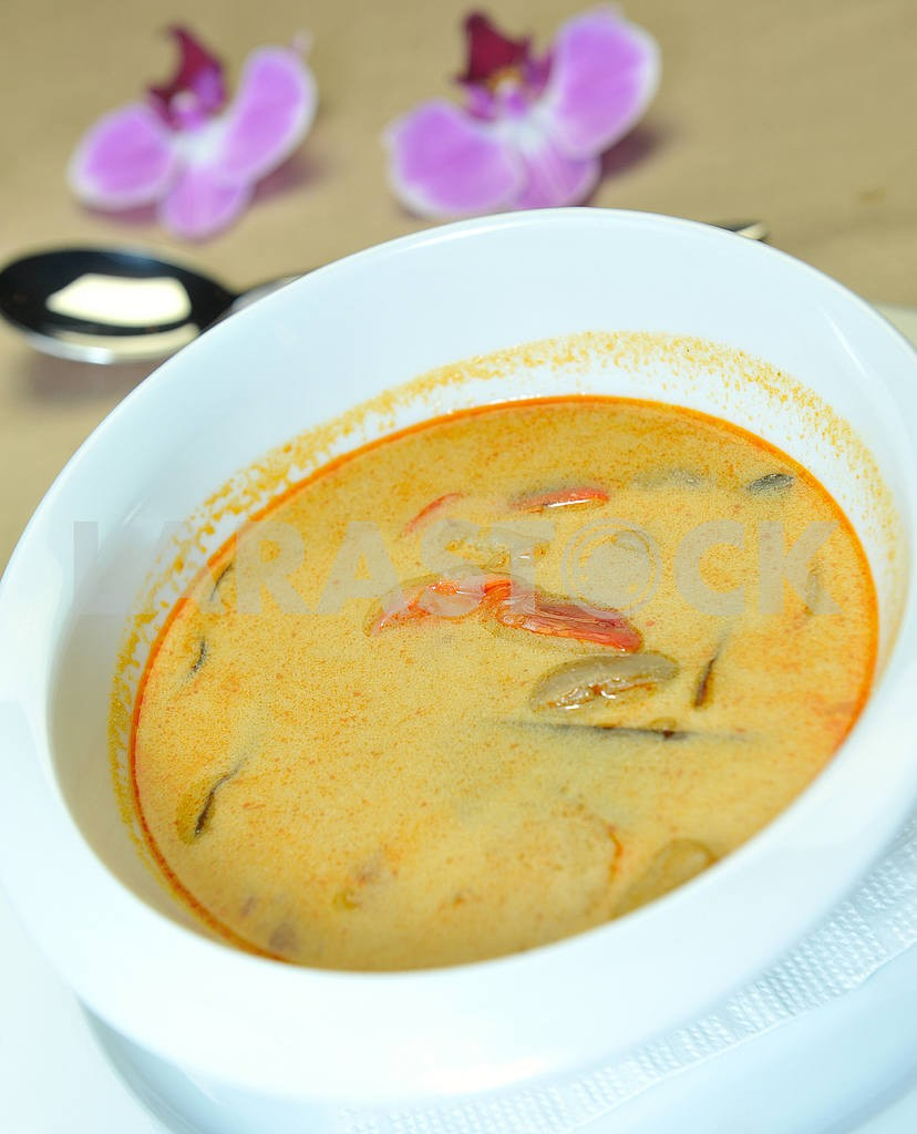 Thai soup with coconut milk — Image 2407