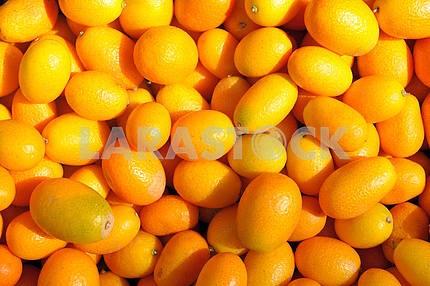 Ripe kumquat