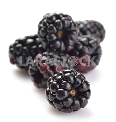 Dewberries (blackberries)