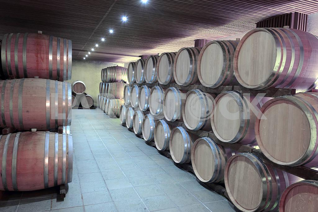 Casks in wine cellar — Image 2626